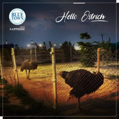 Blue Town Sapphire Ostrich Enclosure gives you a chance to take a selfie with the most unique bird on earth