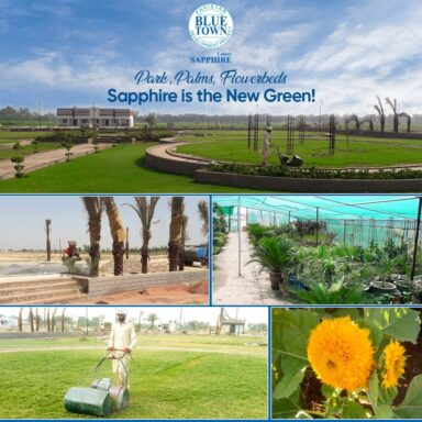 Sapphire is the New green Beautiful parks